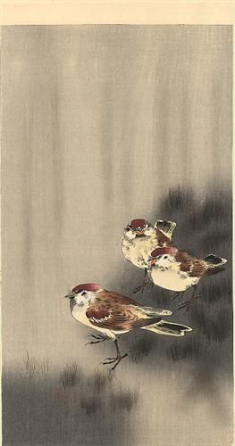 three-tree-sparrows-in-a-rain-shower.jpg!Blog