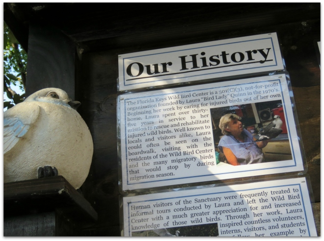our history